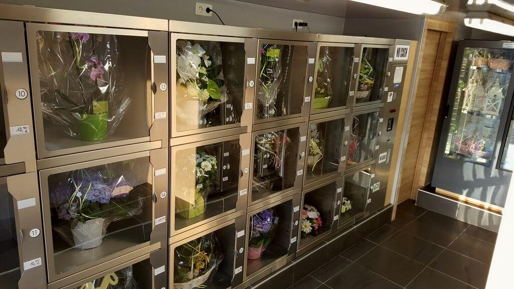 Distributeur automatique de fleurs WDM